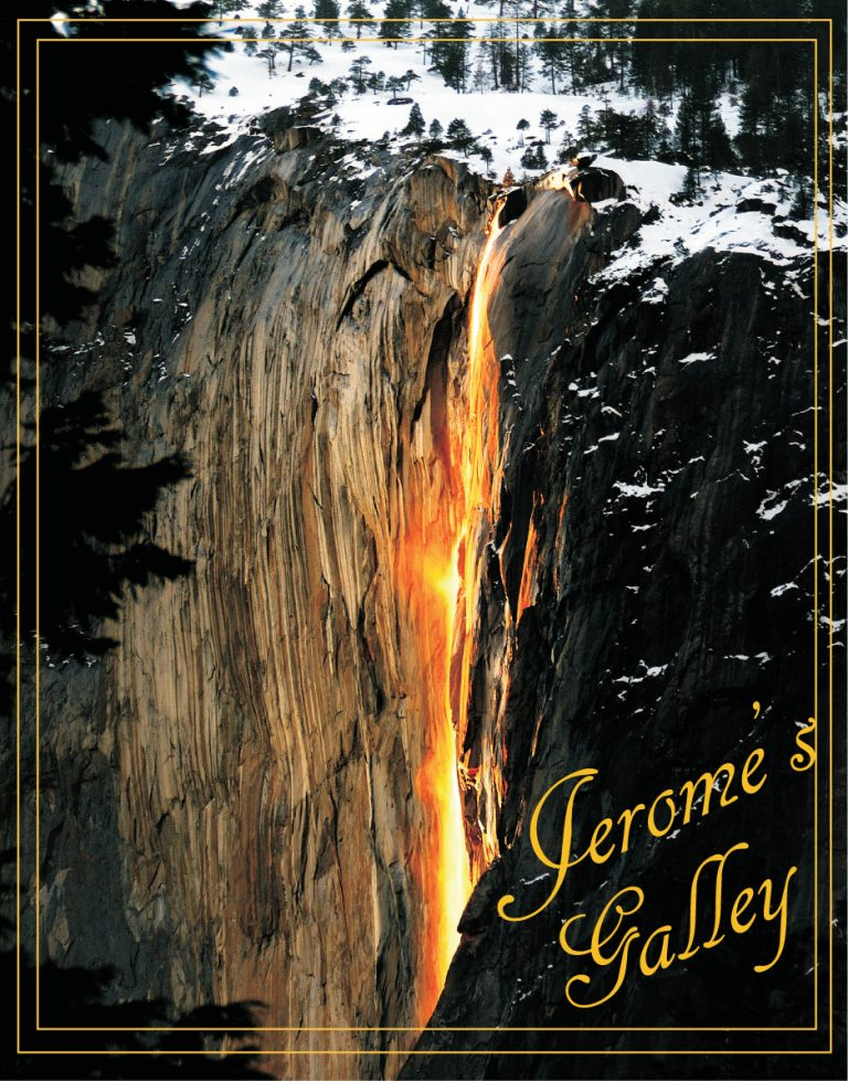 Buy Jerome's Gallery Coffee Table Book