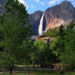 Yosemite Falls Spring with Bridge (YOS-029)