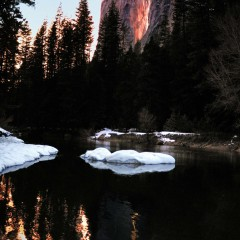 Horsetail Fall Reflection in the Merced (YOS-016)